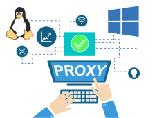 Setup a proxy server on Windows and Linux
